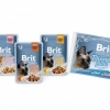 BPC Pouch_fillets in gravy_family