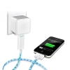 visible-green-charger