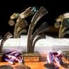 Kynolog roku 2016 - oceneni-prvni-mista