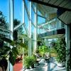 moderni-pojeti-tvaru-a-proporci-oken-vyznamne-ovlivnuje-architekturu-domu-www-veka_-cz_