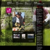 sportkoncept-web-clanek