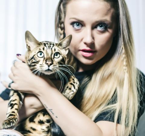 Carnilove Cat_image