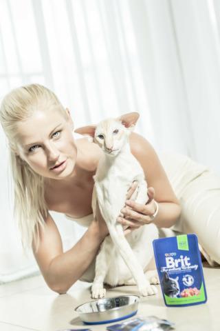 Brit Premium Cat Pouches