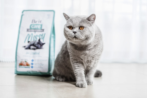 Brit Care Cat - image_1